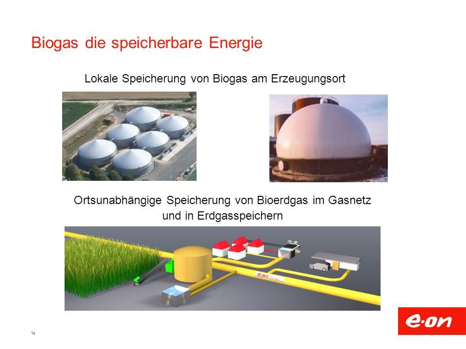 Biogas die speicherbare Energie