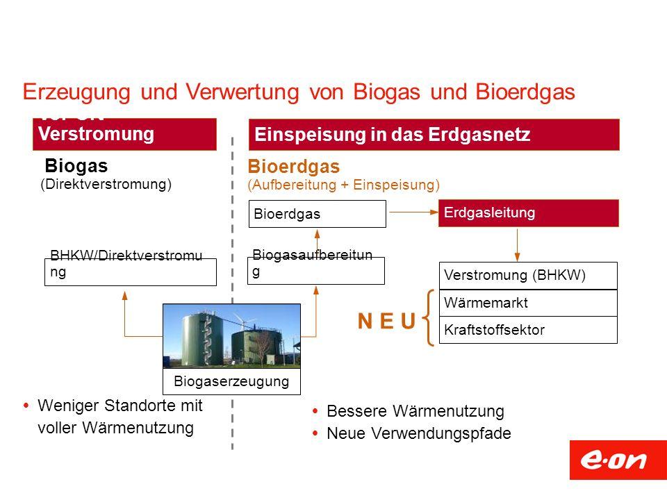 Erzeugung und Verwertung von Biogas und Bioerdgas