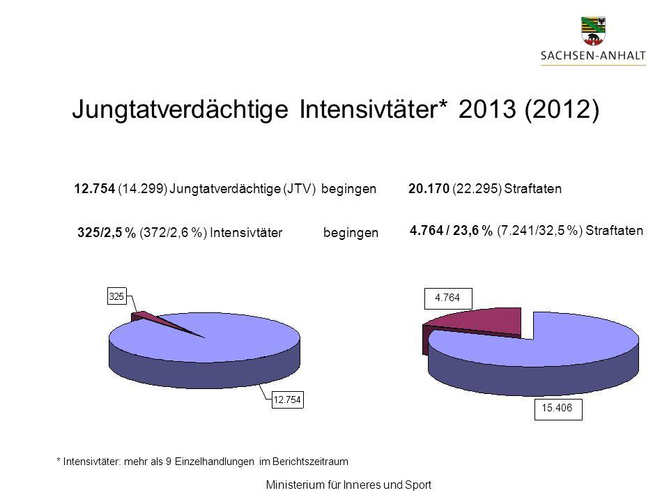 Jungtatverdächtige Intensivtäter* 2013 (2012)