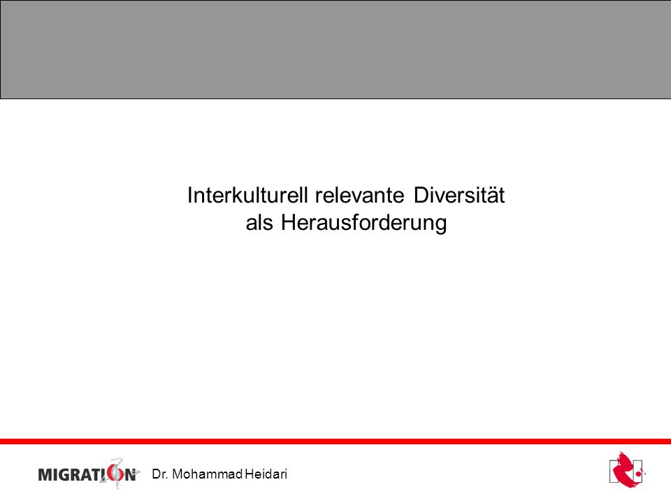 Interkulturell relevante Diversität
