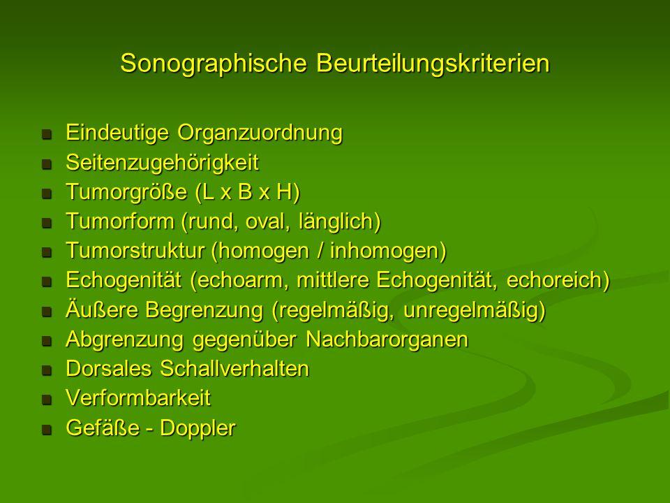 Sonographische Beurteilungskriterien