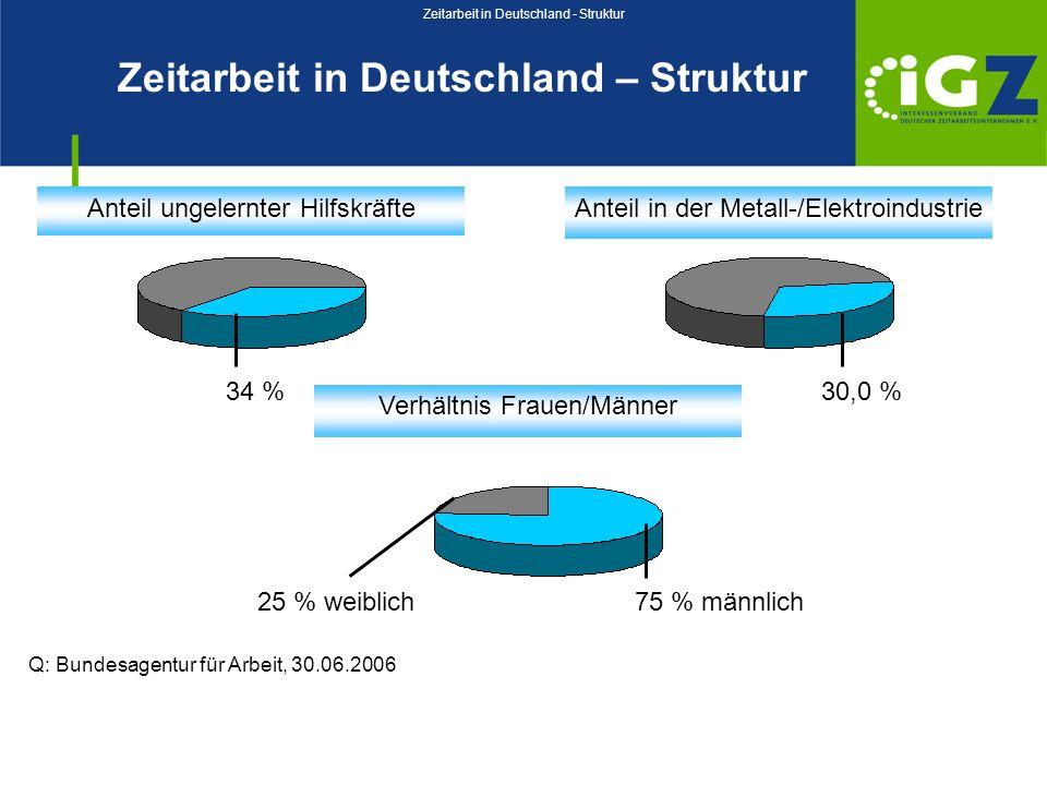 Zeitarbeit in Deutschland - Struktur
