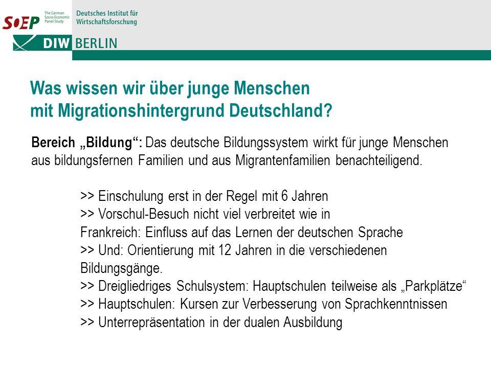 Was wissen wir über junge Menschen mit Migrationshintergrund Deutschland