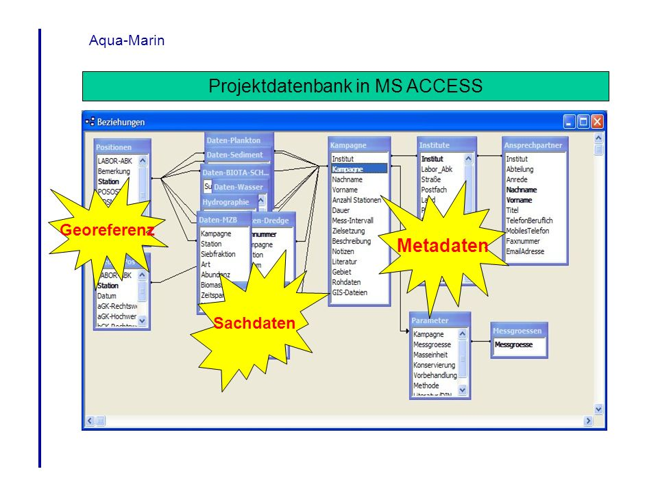 Projektdatenbank in MS ACCESS