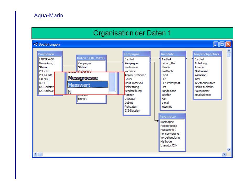 Organisation der Daten 1