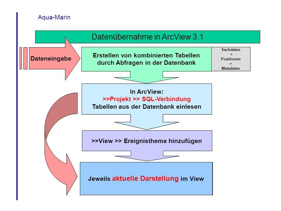 Datenübernahme in ArcView 3.1