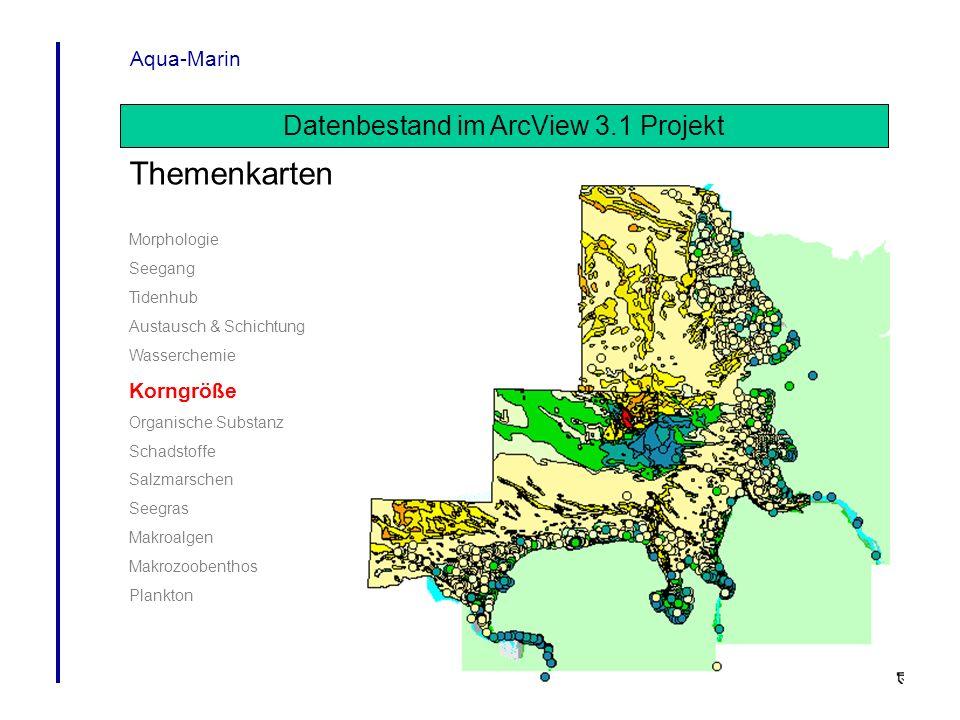 Datenbestand im ArcView 3.1 Projekt