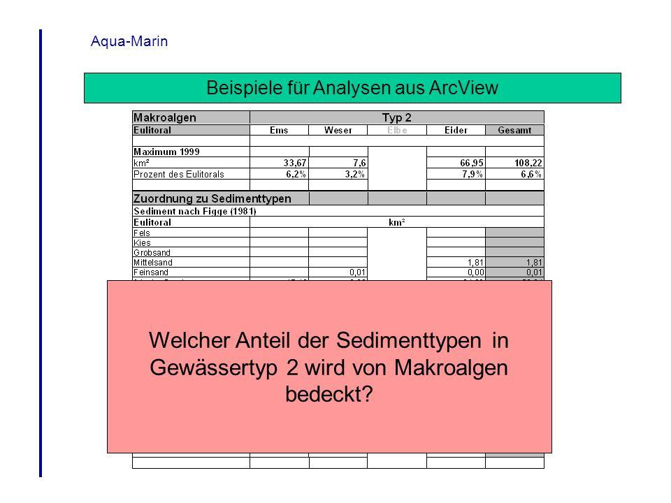 Beispiele für Analysen aus ArcView