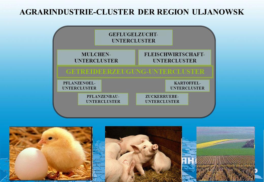 AGRARINDUSTRIE-CLUSTER DER REGION ULJANOWSK