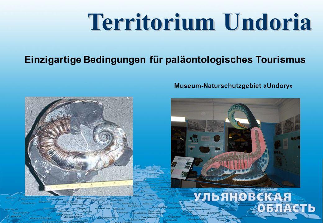 Territorium Undoria Einzigartige Bedingungen für paläontologisches Tourismus.