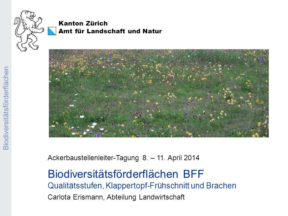Biodiversitätsförderflächen