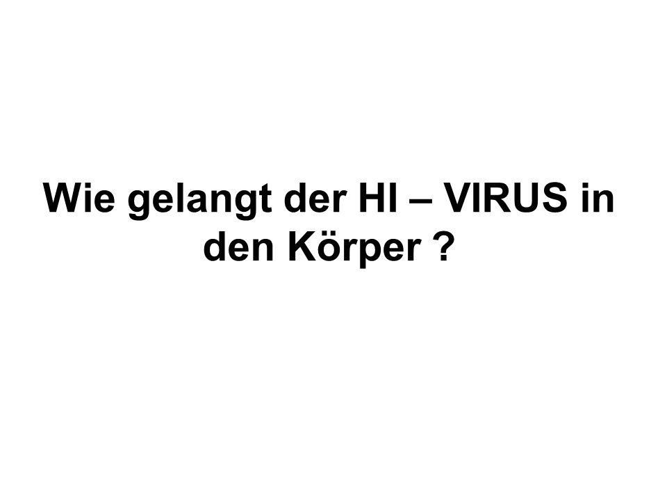 Wie gelangt der HI – VIRUS in den Körper