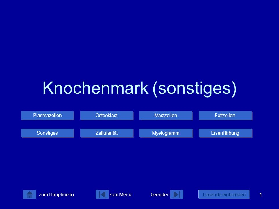 Knochenmark (sonstiges)