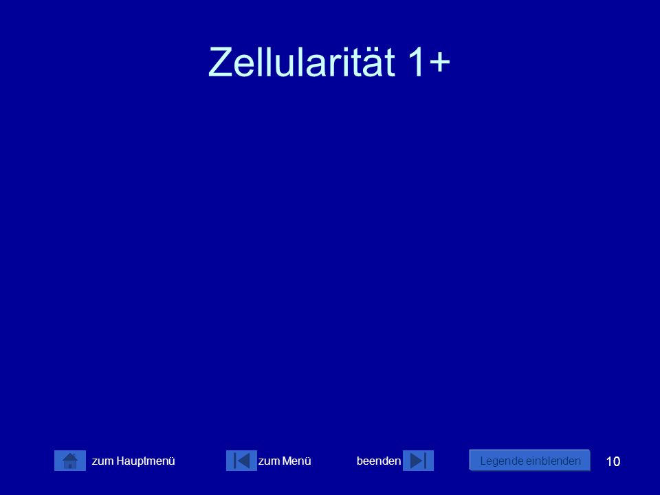 Zellularität 1+
