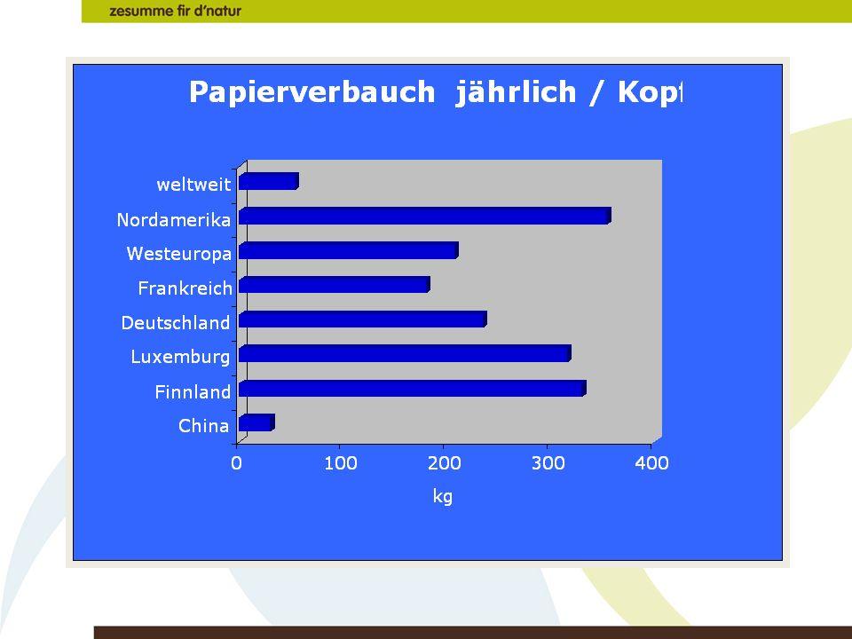 Papierverbrauch/Kopf und Jahr
