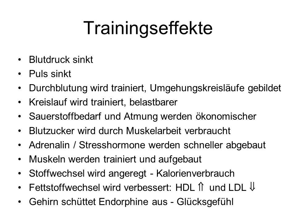 Trainingseffekte Blutdruck sinkt Puls sinkt