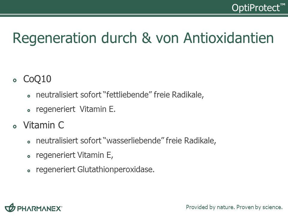 Regeneration durch & von Antioxidantien
