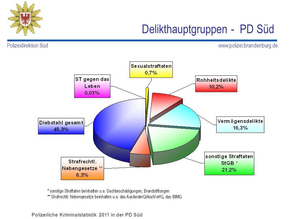 Delikthauptgruppen - PD Süd