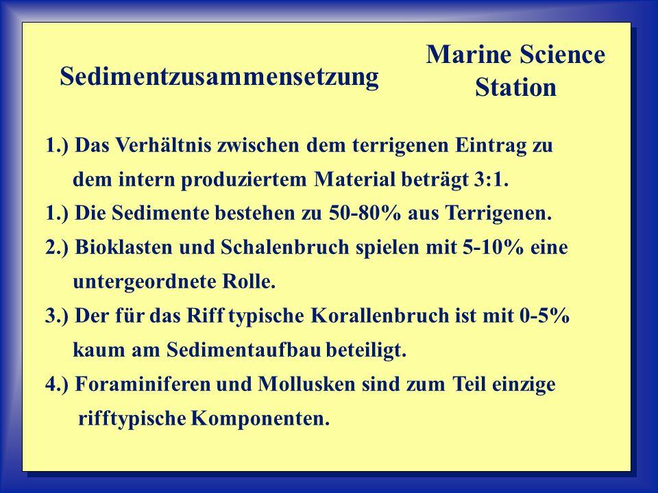 Marine Science Station Sedimentzusammensetzung