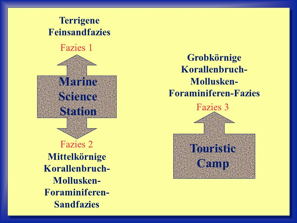 -------- Marine Science Station Touristic Camp