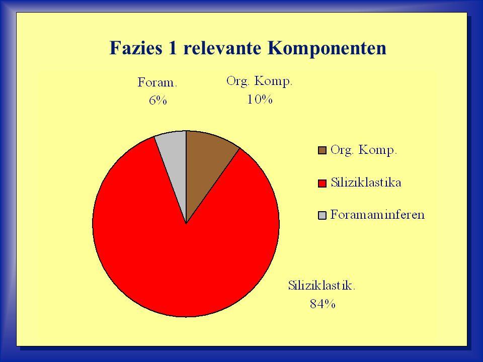 Fazies 1 relevante Komponenten