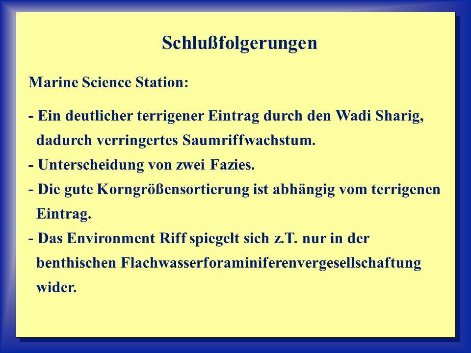 Schlußfolgerungen Marine Science Station: