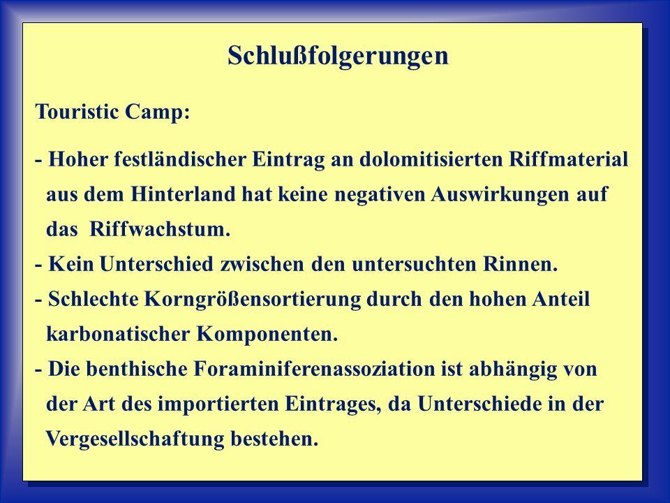 Schlußfolgerungen Touristic Camp: