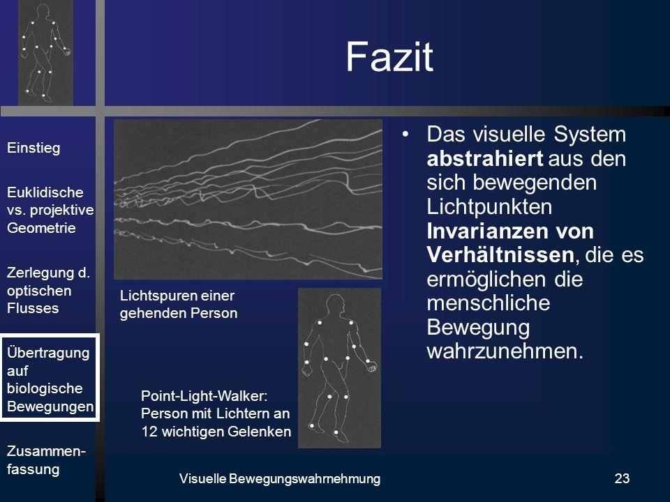 Visuelle Bewegungswahrnehmung