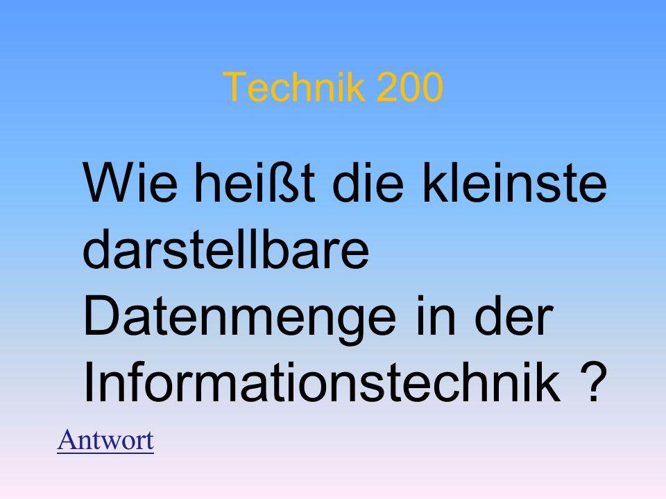Technik 200 Wie heißt die kleinste darstellbare Datenmenge in der Informationstechnik Antwort