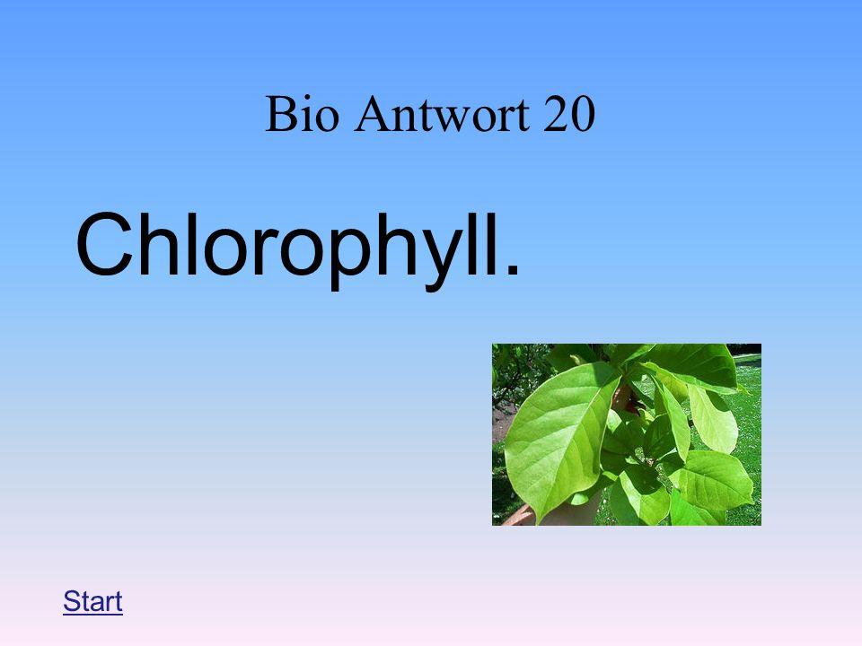 Bio Antwort 20 Chlorophyll. Start