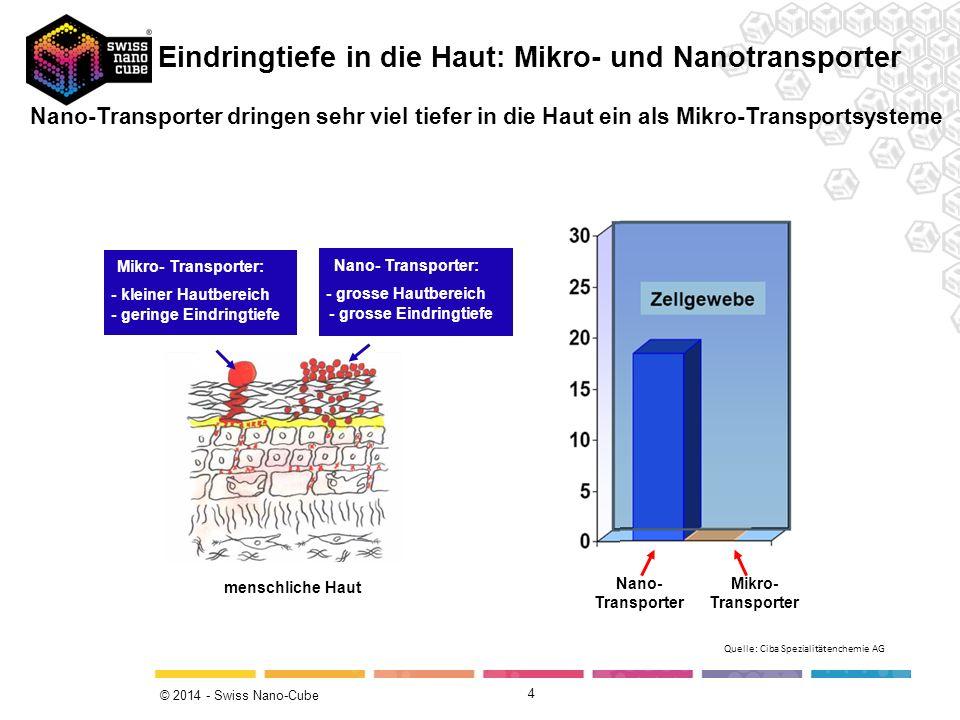 Eindringtiefe in die Haut: Mikro- und Nanotransporter