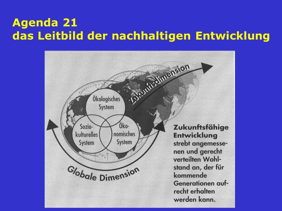 Agenda 21 das Leitbild der nachhaltigen Entwicklung