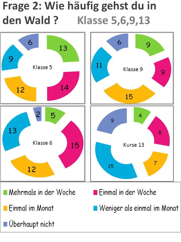 Auswertung der Ergebnisse der Umfrage