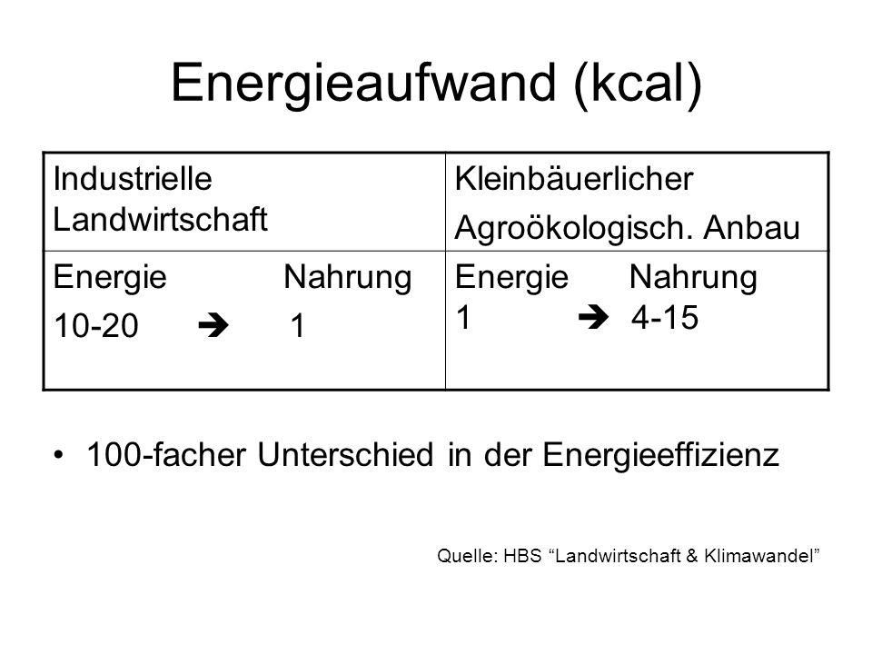 Energieaufwand (kcal)