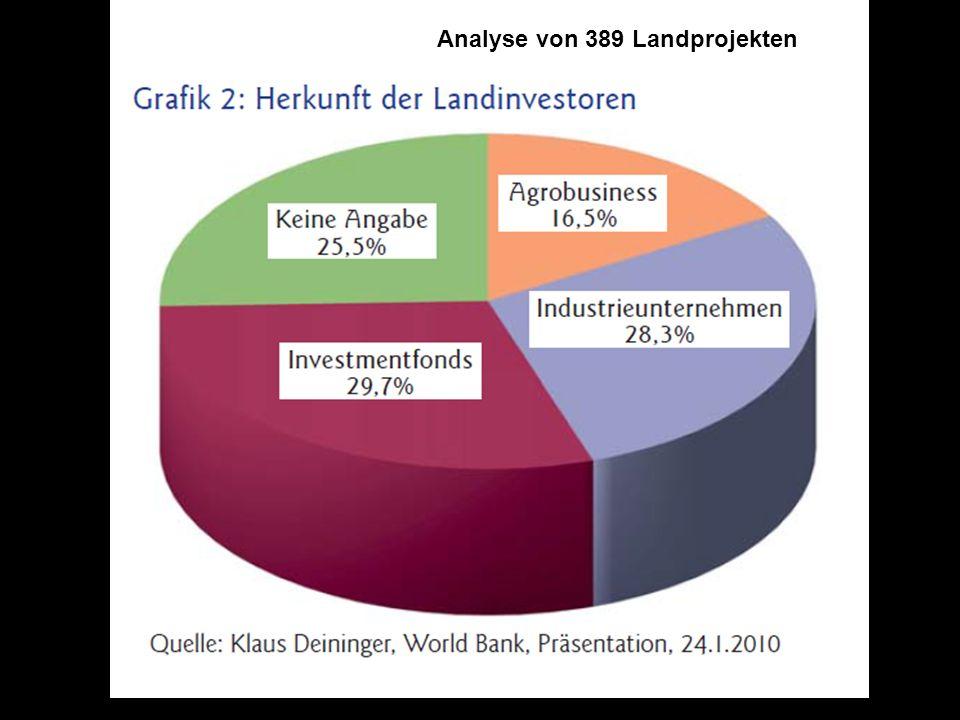 Analyse von 389 Landprojekten
