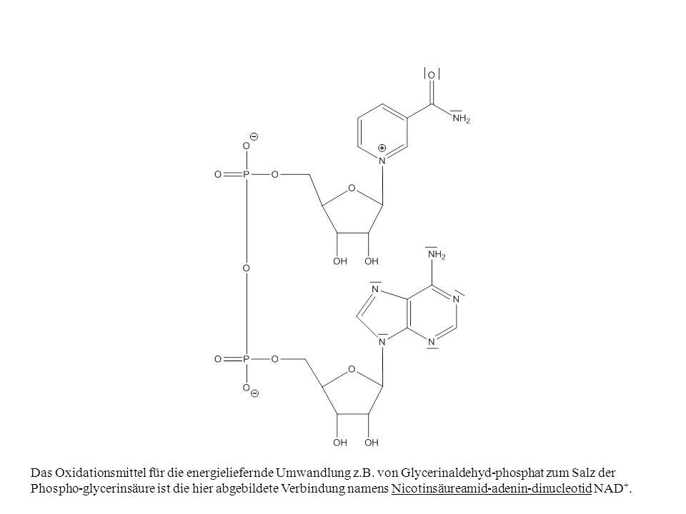 Das Oxidationsmittel für die energieliefernde Umwandlung z. B