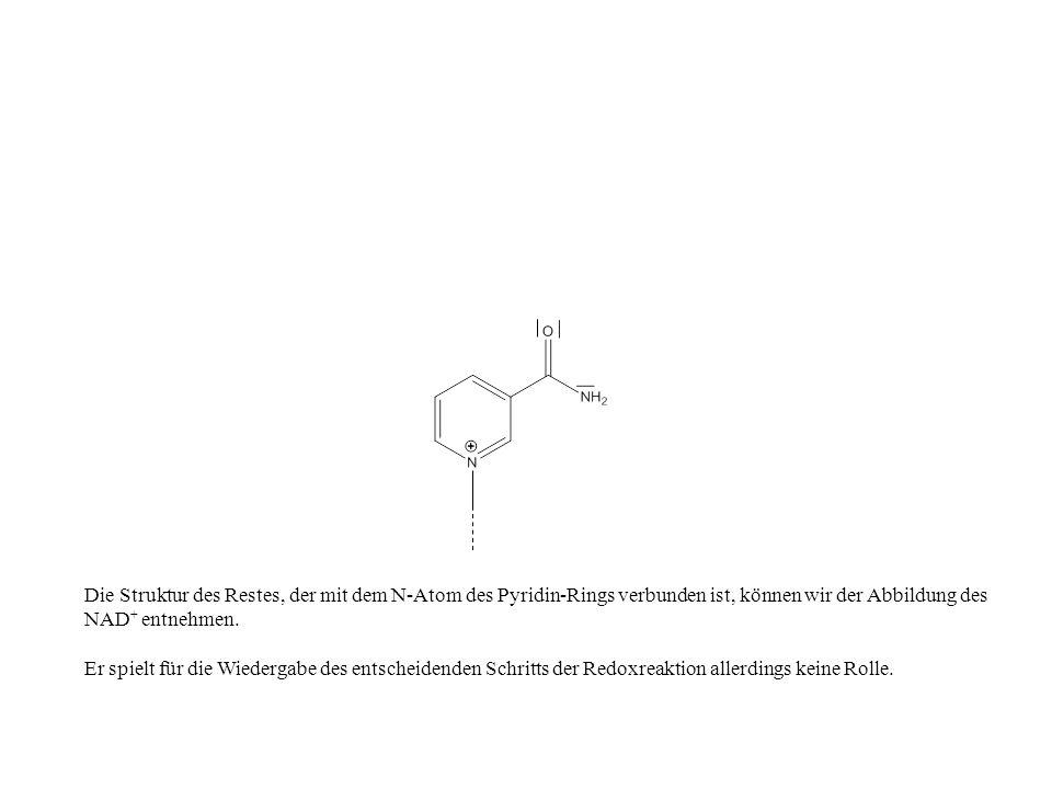 Die Struktur des Restes, der mit dem N-Atom des Pyridin-Rings verbunden ist, können wir der Abbildung des NAD+ entnehmen.