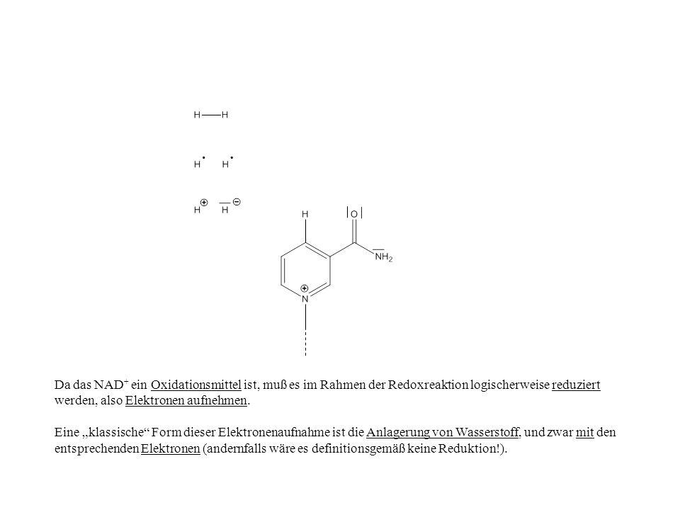 Da das NAD+ ein Oxidationsmittel ist, muß es im Rahmen der Redoxreaktion logischerweise reduziert werden, also Elektronen aufnehmen.