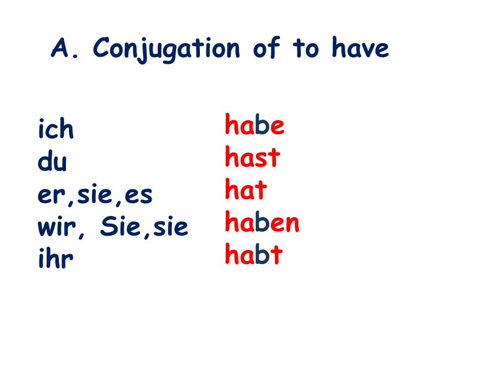 A. Conjugation of to have