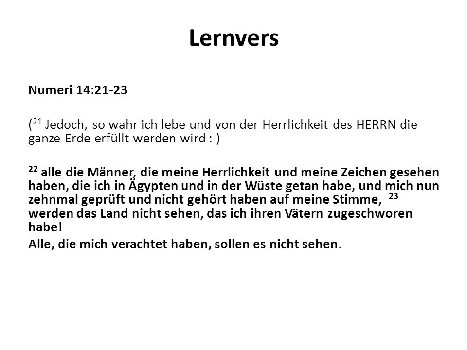 Lernvers