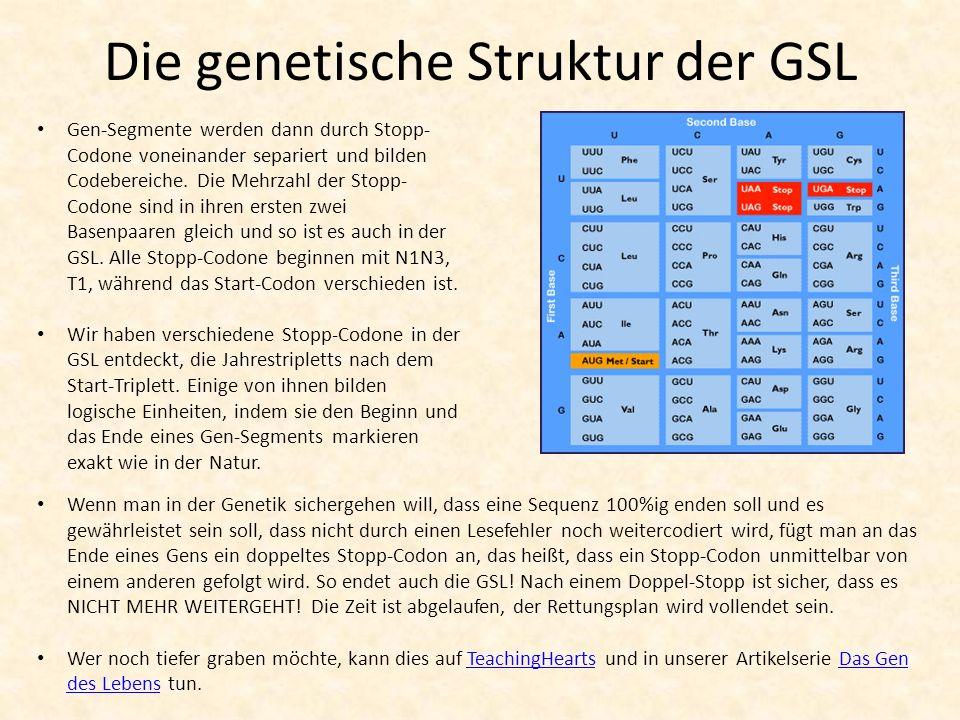 Die genetische Struktur der GSL