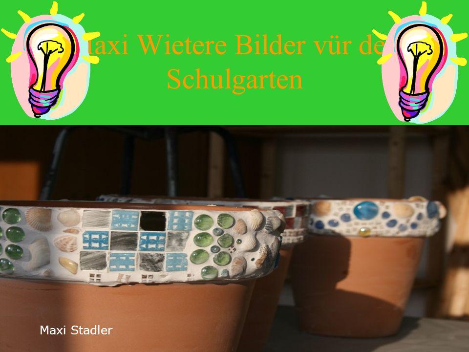 Maxi Wietere Bilder vür den Schulgarten