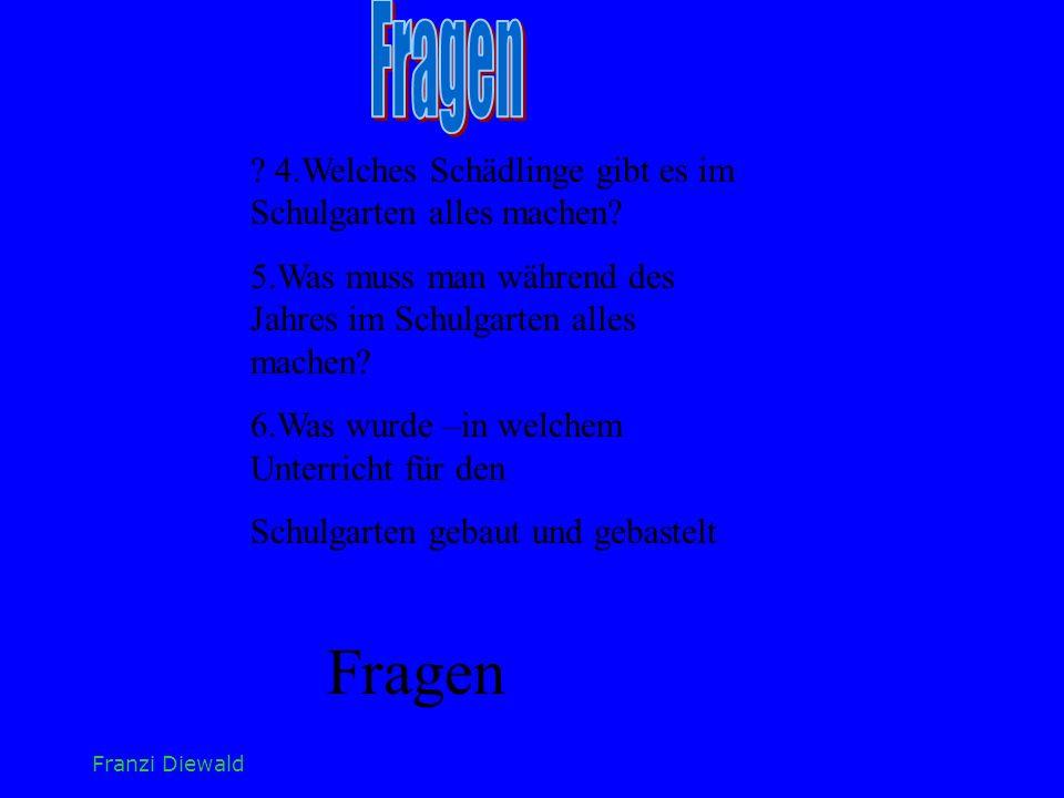 Fragen 4.Welches Schädlinge gibt es im Schulgarten alles machen 5.Was muss man während des Jahres im Schulgarten alles machen