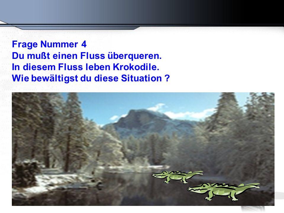 Frage Nummer 4 Du mußt einen Fluss überqueren. In diesem Fluss leben Krokodile.