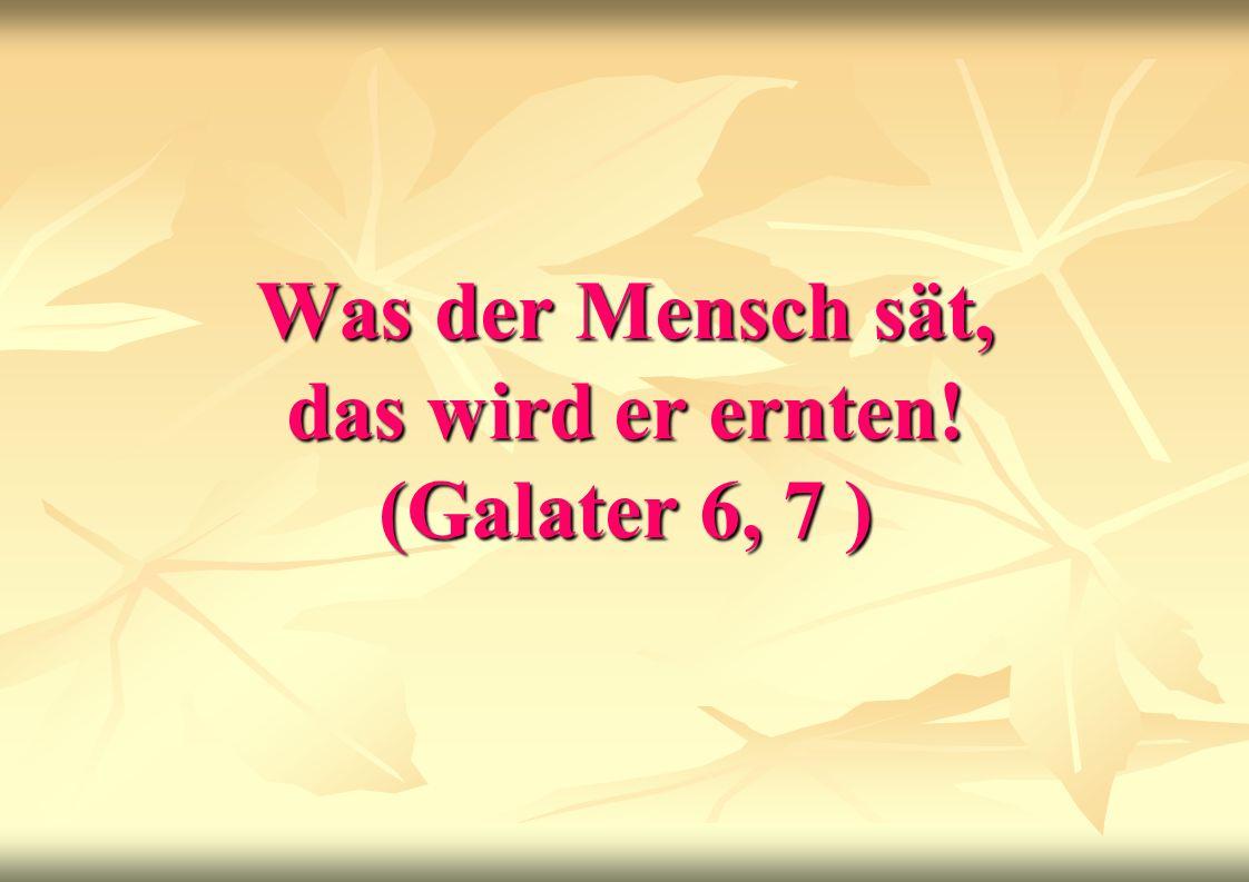 Was der Mensch sät, das wird er ernten! (Galater 6, 7 )