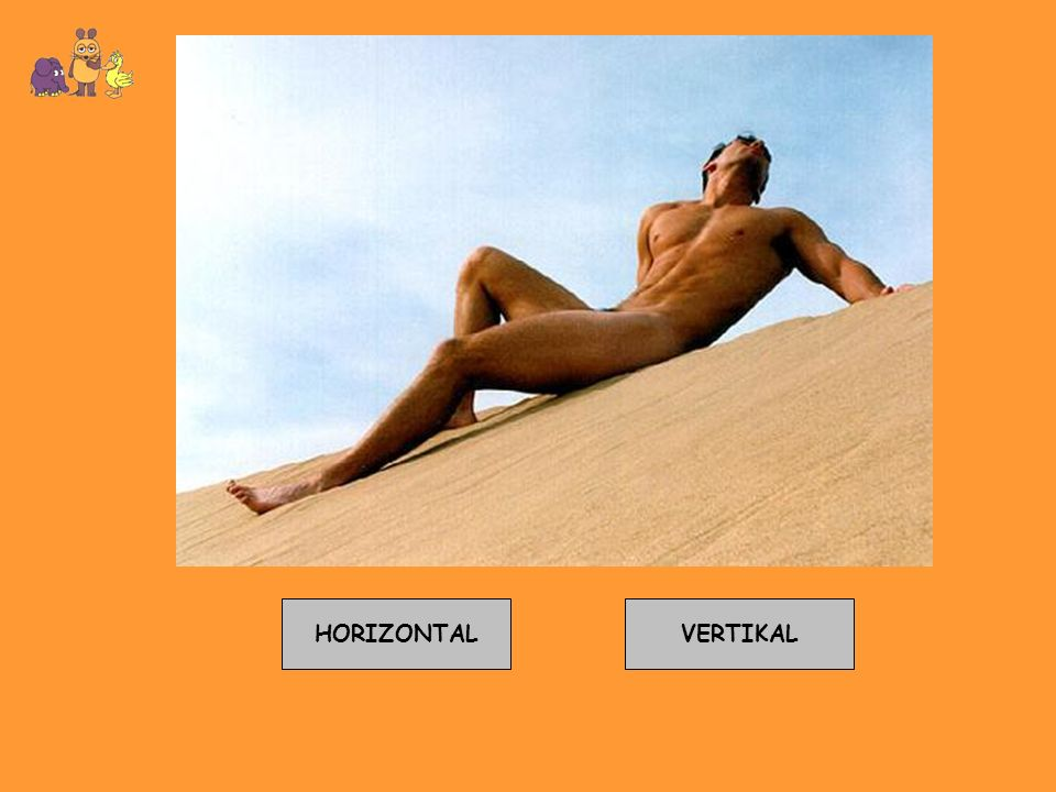 HORIZONTAL VERTIKAL