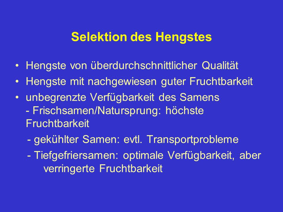Selektion des Hengstes