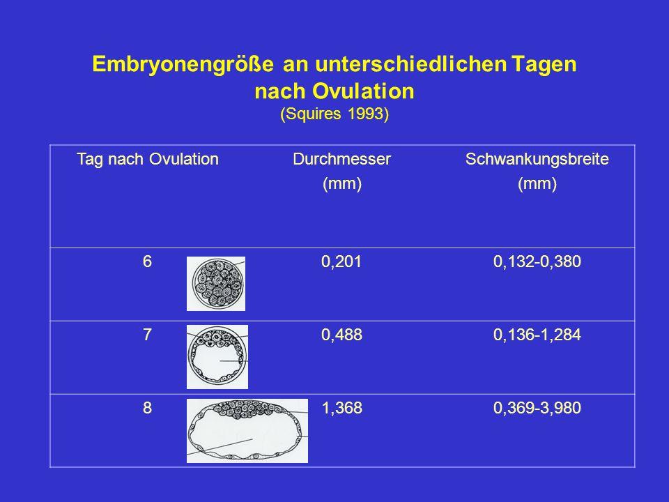Embryonengröße an unterschiedlichen Tagen nach Ovulation (Squires 1993)