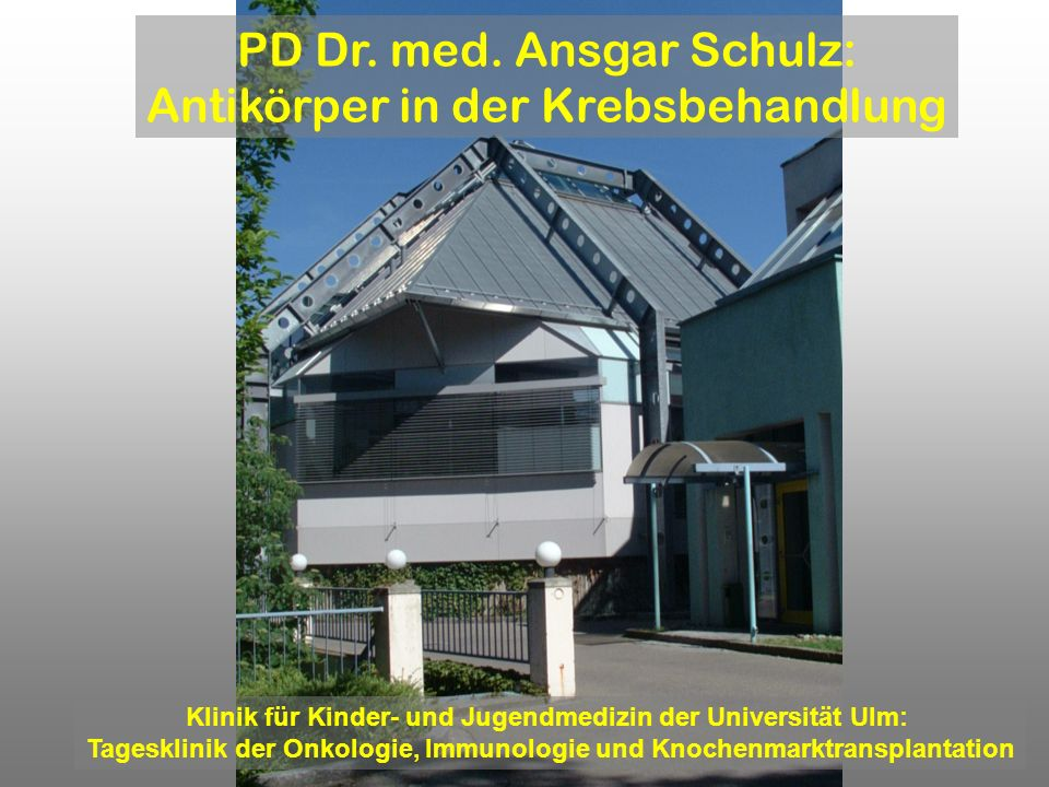 PD Dr. med. Ansgar Schulz: Antikörper in der Krebsbehandlung