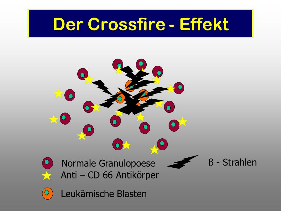Der Crossfire - Effekt ß - Strahlen Normale Granulopoese